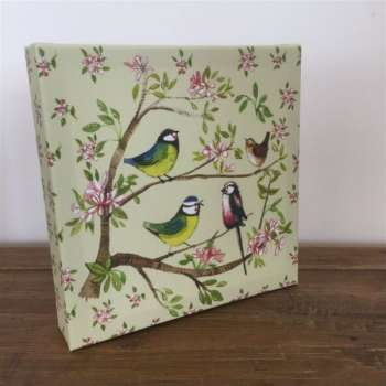 Garden Birds Canvas by Alex Clarke