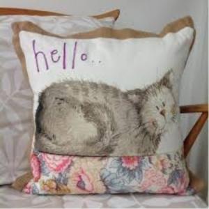 Hello Cushion From Alex Clarke