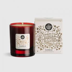 Irish Soap Company Cinnamon Clove Nutmeg & Pine