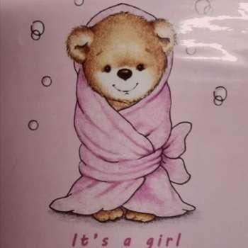 Baby Girl Soft Fleece Blanket Boxed