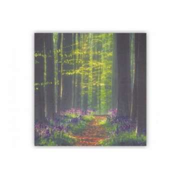 The Grange Collection A Walk In The Forest Canvas