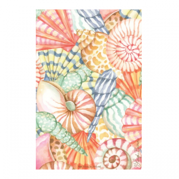 Willowbrook Sea Shells Large Scented Sachet